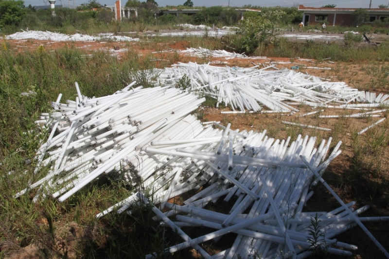 Empresa coleta mais de 30 mil lâmpadas descartadas irregularmente em Canoas (RS)