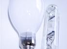 Preservação ambiental: 1,7 milhão de lâmpadas recicladas no primeiro trimestre de 2012